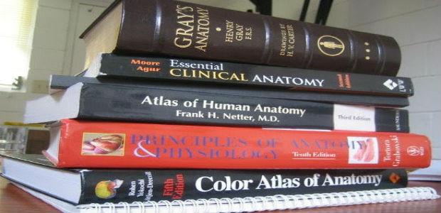 Anatomy Preparation